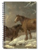 Two Horses In The Snow Spiral Notebook