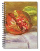 Two Pomegranates Spiral Notebook