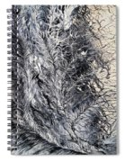 Under His Wing Spiral Notebook