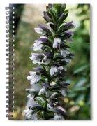 Up A Hill Spiral Notebook