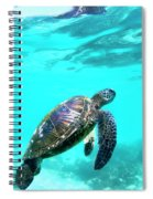 Up For Air Spiral Notebook