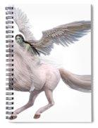 Valkyrie Spirit Spiral Notebook