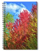 Vibrant Autumn Hues At Cornell University - Ithaca, New York Spiral Notebook
