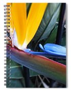 Vibrant Bird Of Paradise #2 Spiral Notebook