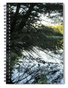 View Of The Lake Through The Branches Spiral Notebook