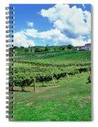 Vineyard, Whangarei, Northland, New Spiral Notebook