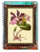 Vintage Orchid Antique Design Marble Caribbean-blue Spiral Notebook