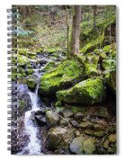 Vivid Green In The Black Forest Spiral Notebook