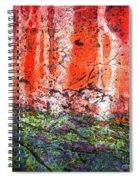 Vulcanic Experience Spiral Notebook