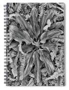 Waikiki Floral Study 5 Spiral Notebook