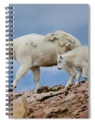 Walking The Ridge. Spiral Notebook