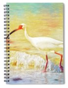 Walking The Waves Of Sanibel Spiral Notebook