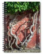 Walking Wall Spiral Notebook