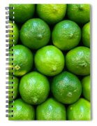 Wall Of Limes Spiral Notebook