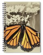 Wandering Migrant Butterfly Spiral Notebook
