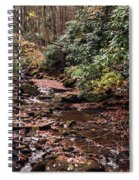 Washington Creek Spiral Notebook