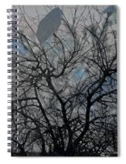 Wasteway Willow 04 Spiral Notebook