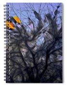 Wasteway Willow 10 Spiral Notebook