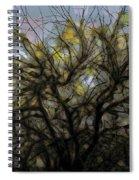 Wasteway Willow 11 Spiral Notebook