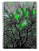 Wasteway Willow 12 Spiral Notebook