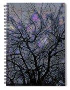 Wasteway Willow 15 Spiral Notebook