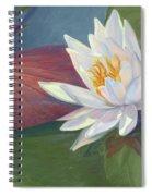 Water Beauty Spiral Notebook