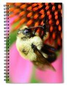 Water Drop On Bee Eye Spiral Notebook