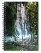 Water Feature  Spiral Notebook