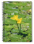 Water Garden Spiral Notebook