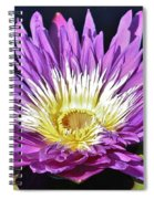 Water Lily On The Pond Spiral Notebook