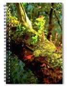 Water Log Spiral Notebook
