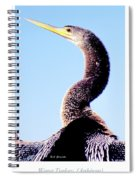 Water Turkey, Anhinga, Animal Portrait Spiral Notebook