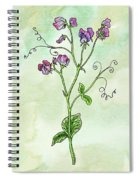 Watercolor Sweet Pea Flower Botanical Spiral Notebook