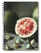 Watermelons And Figs On A Stone Ledge  Spiral Notebook