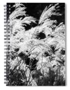 Weed Grass Black And White Spiral Notebook