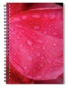 Wet Rose Petal Spiral Notebook