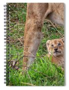 What Could Be Cuter Than A Baby Lion Cub? Spiral Notebook