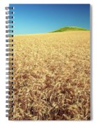 Wheat And Mounds Spiral Notebook