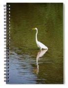 White Egret In Water Spiral Notebook