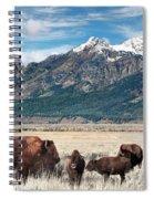 Wild Bison On The Open Range Spiral Notebook