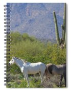 Wild Horses Tonto National Forest Spiral Notebook
