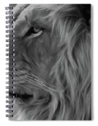 Wild Lion Face Spiral Notebook