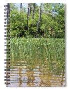 Wild Waters Spiral Notebook