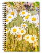 Wild White Daisies Spiral Notebook
