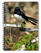 Willy Wagtail #1 Spiral Notebook