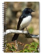 Willy Wagtail #2 Spiral Notebook