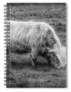 Windblown In Scotland Black And White Spiral Notebook