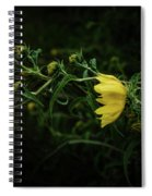 Windy Weeds Spiral Notebook