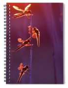 Winged Wonders - Dragonflies At Sunset Spiral Notebook