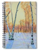 Winter Birches-cardinal Left Spiral Notebook